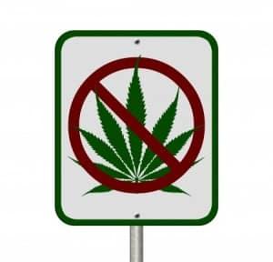 michigan-marijuana-vehicle-driving